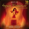 Best of Gypsy Flamenco from Andalusia
